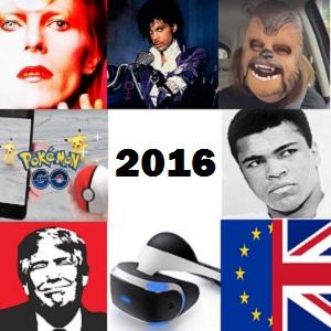 2016%20review.jpg