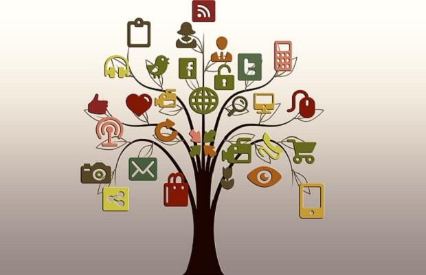 startup%20tree.jpg