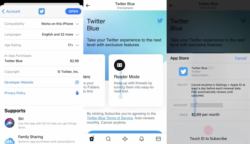 Twitter planning 'Blue' £2.49 subscription service